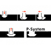 p-system